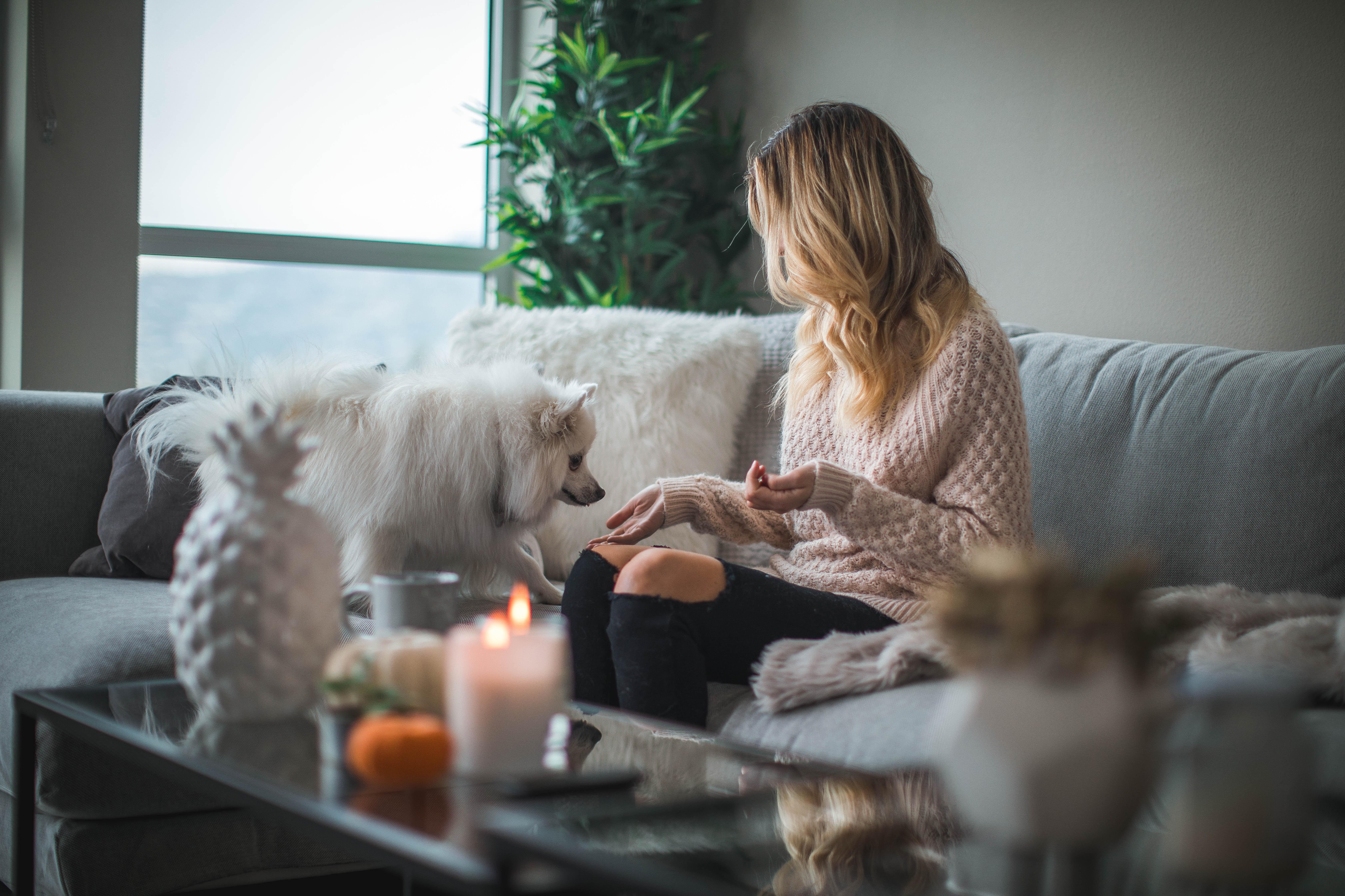 5 เทคนิคการแต่งบ้านลดความเครียด